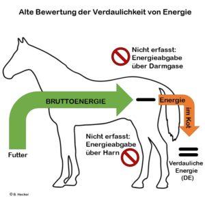 Alte Bewertung der Verdaulichkeit von Energie beim Pferd