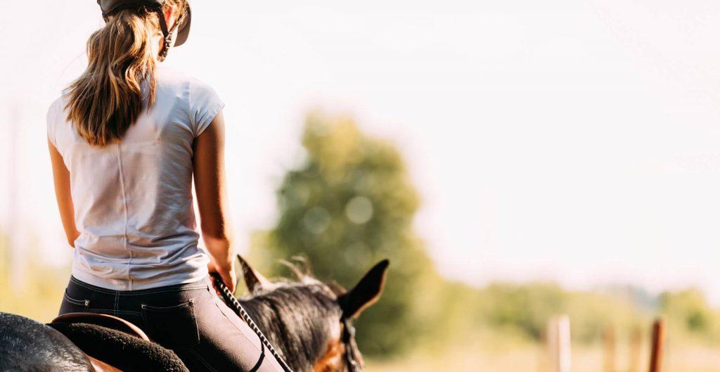 Pferdefutterdatenbank kostenlos bei Opti-Ration