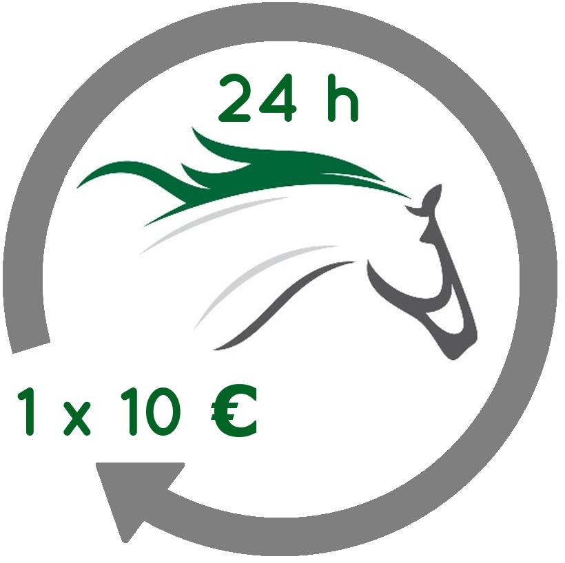 Rationsberechnung Pferd