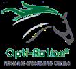 Rationsberechnung Online für Pferde